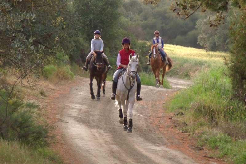 Horse riding on Paphos surrounding hills